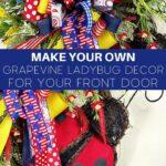 Make Your Own Patriotic Ladybug Decor
